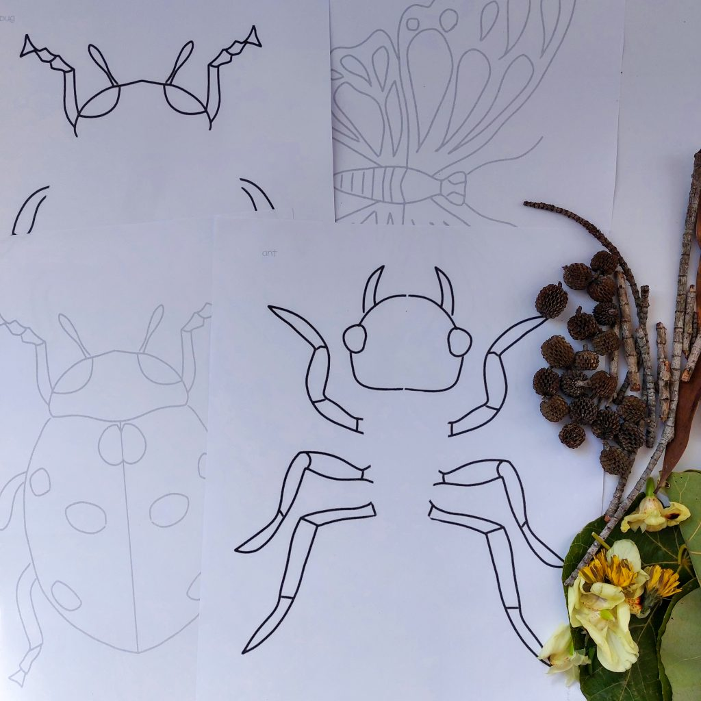 Nature and art templates insect version. Printable great for home learning activity, homeschool nature ideas and so much more.