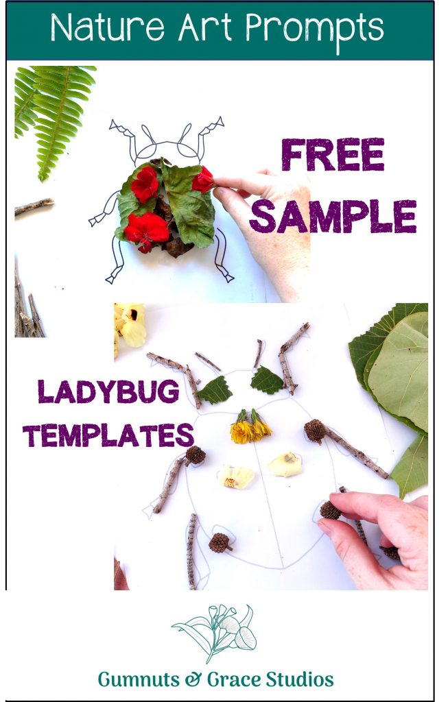 Free sample nature art prompts. Insect printables. Learn from home made easy.